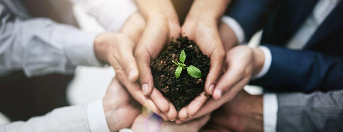 9 atitudes sustentáveis simples para incorporar no dia a dia