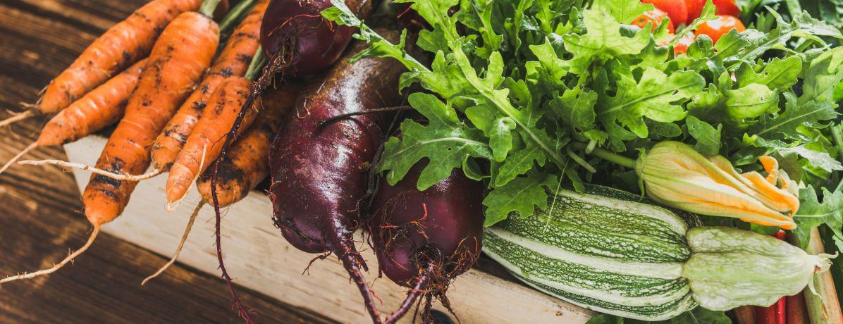 6 dicas de alimentação sustentável para ajudar o meio ambiente