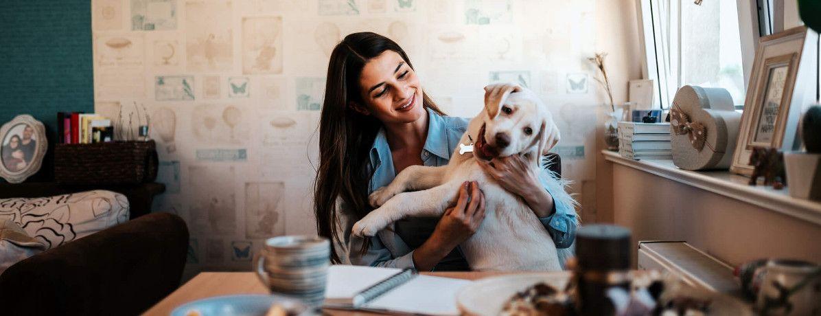 7 dicas de como criar cachorro em apartamento e não ter problemas
