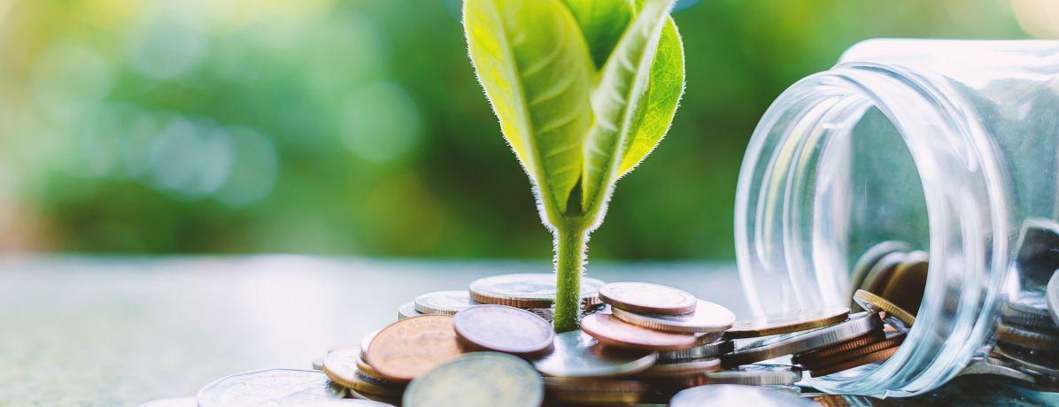 Sustentabilidade econômica: os pilares e desafios encontrados