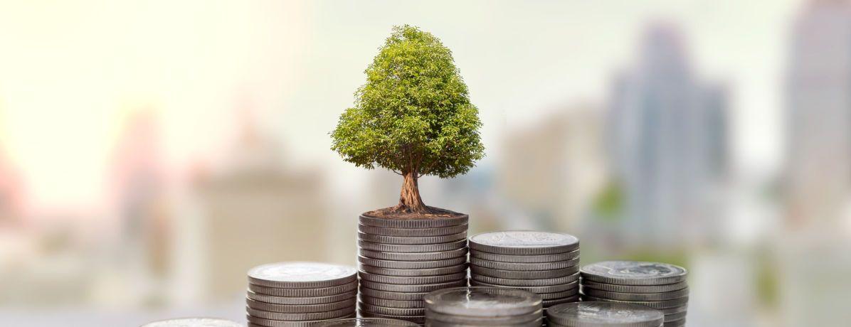 Sustentabilidade financeira: entenda o conceito e a aplicação
