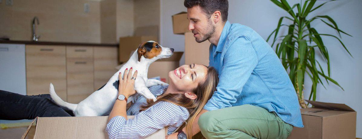 7 características essenciais no imóvel para ter pets no apartamento